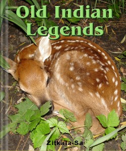 Cover Art for Old Indian Legends