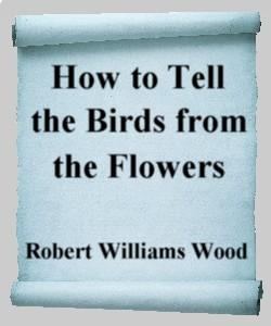 Cover Art for How to Tell the Birds from the Flowers