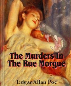 Cover Art for The Murders in the Rue Morgue