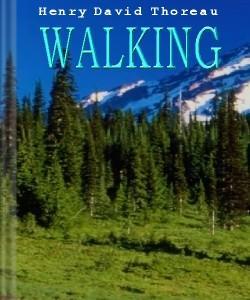 Cover Art for Walking