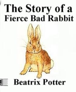 Cover Art for The Story of a Fierce Bad Rabbit