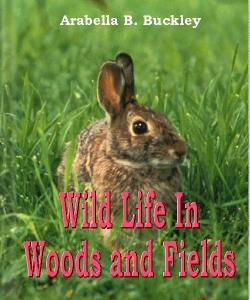 Cover Art for Wild Life in Woods and Fields