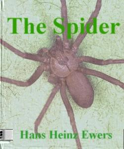 Cover Art for The Spider