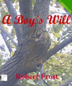 Cover Art for A Boy's Will
