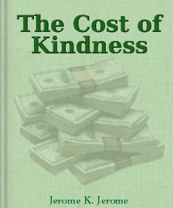 Cover Art for The Cost of Kindness