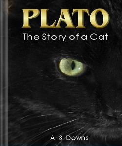 Cover Art for Plato: The Story of a Cat