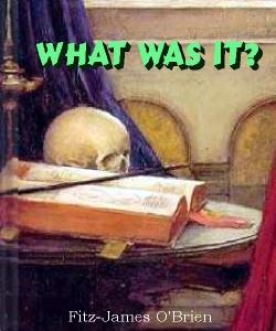 Cover Art for What Was It?