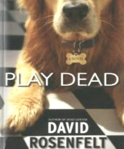 Cover Art for Play Dead