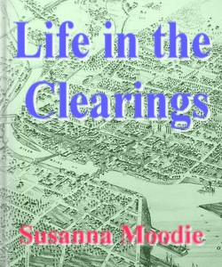 Cover Art for Life in the Clearings